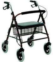 Wheeled Outdoor Walker.